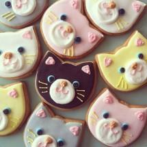 Cookies Galeri