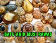 Batu Akik Musi Rawas
