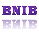 BNIB (Brand New In Box)