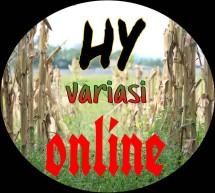 HY variasi online