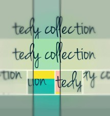 tedy collection