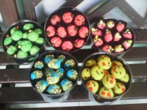 Unix cookies
