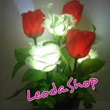 Leoda shop