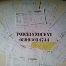 voiceinnocent