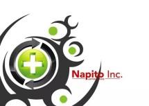 Napito Laptop Service