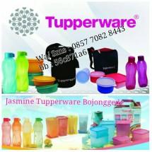 jasmine tuppy