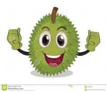 mafia durian medan