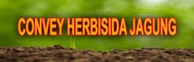Herbisida jagung