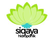 Siqaya Hidroponik