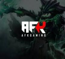 AFK Gaming Store