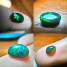 seeker88 opal shop
