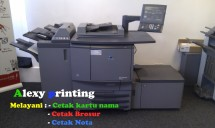 Alexy printing