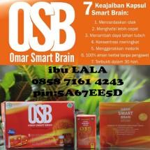 OSB vitamin otak