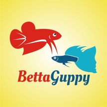 BettaGuppy