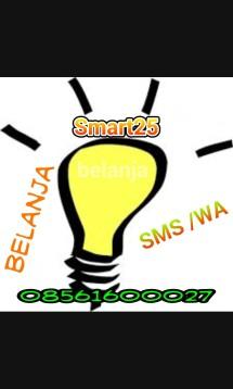Smart25
