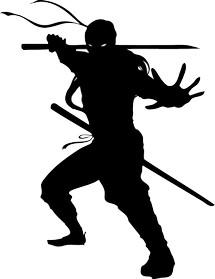 ninja88