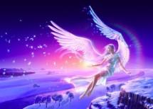 Angel Store online