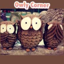 Owly Corner