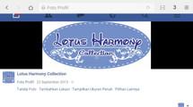 Lotus Harmony Collection