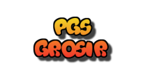 PGS Grosir
