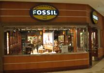 Fossil dan Mode