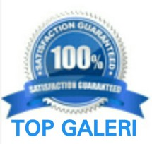 Top Galeri