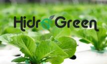 HD GREEN