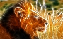 Lion Elektrik