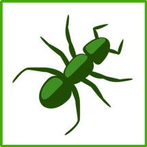 SpideWorks ID