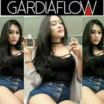 gardiaflowindo