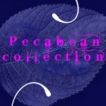 pecabeancollection