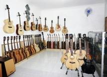 Hamifams music guitars