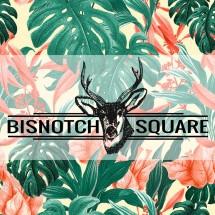 BISNOTCH SQUARE