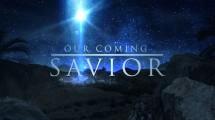 savior glass
