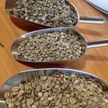 Creema Coffee