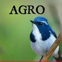 Agro256
