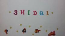Shidqi Sina Shop