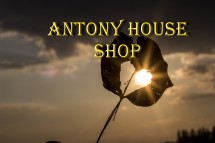 Antony House Shop