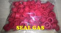 SEAL GAS