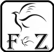 Forza Tech