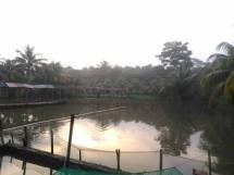 MV Fishing