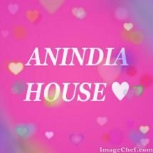 anindia house