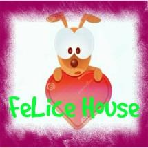 Felice House