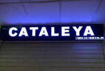 Cataleya PGMTA