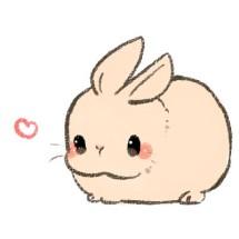 Fluffy Bunny Cosmetics