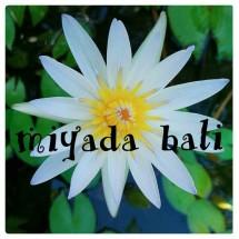 Miyada Bali Shop
