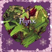 Flynx Shop