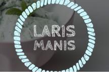 Laris Manis 819