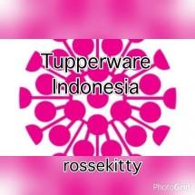 tupperware rossekitty