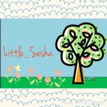 Little_sesha